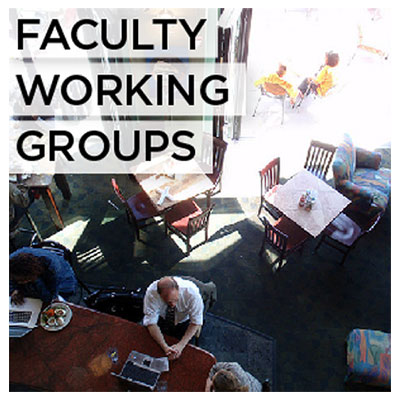 Faculty Working Groups